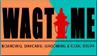 wagtime logo