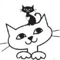 Feline FG