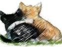 Cat Hosp.FFx